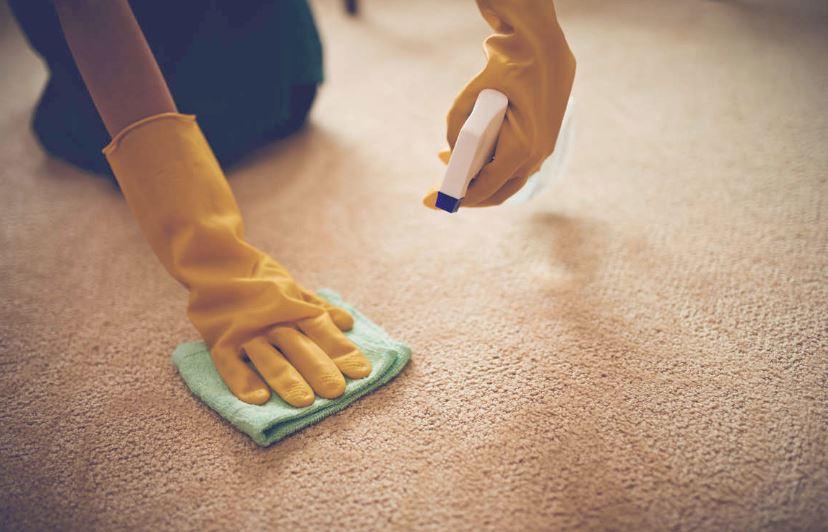 cómo mantener limpia la alfombra