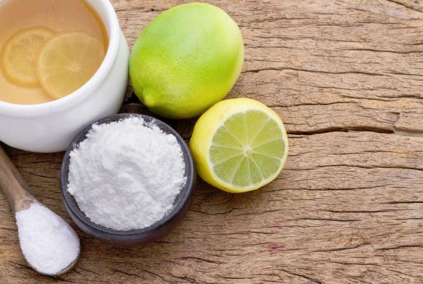 productos para eliminar olor orina gato