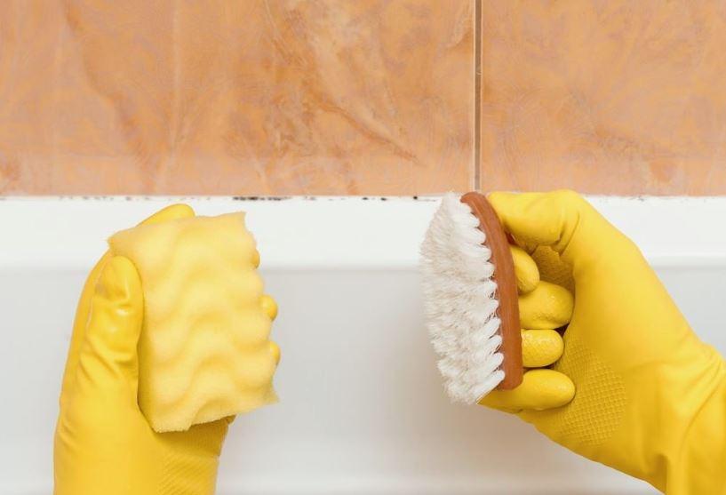 como quitar el moho de la bañera y azulejos