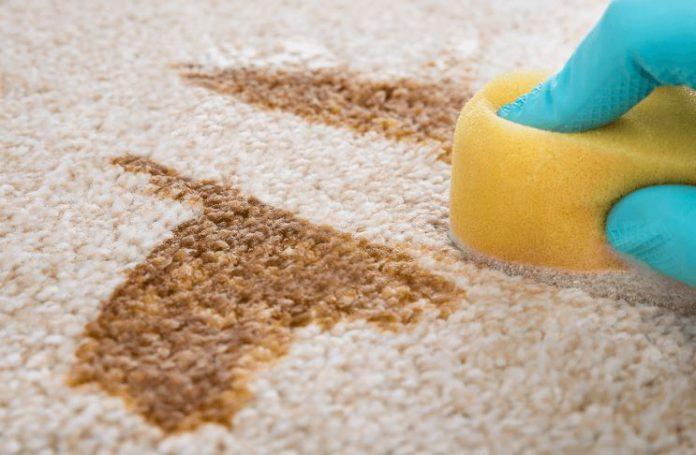 como quitar manchas de la alfombra de lana