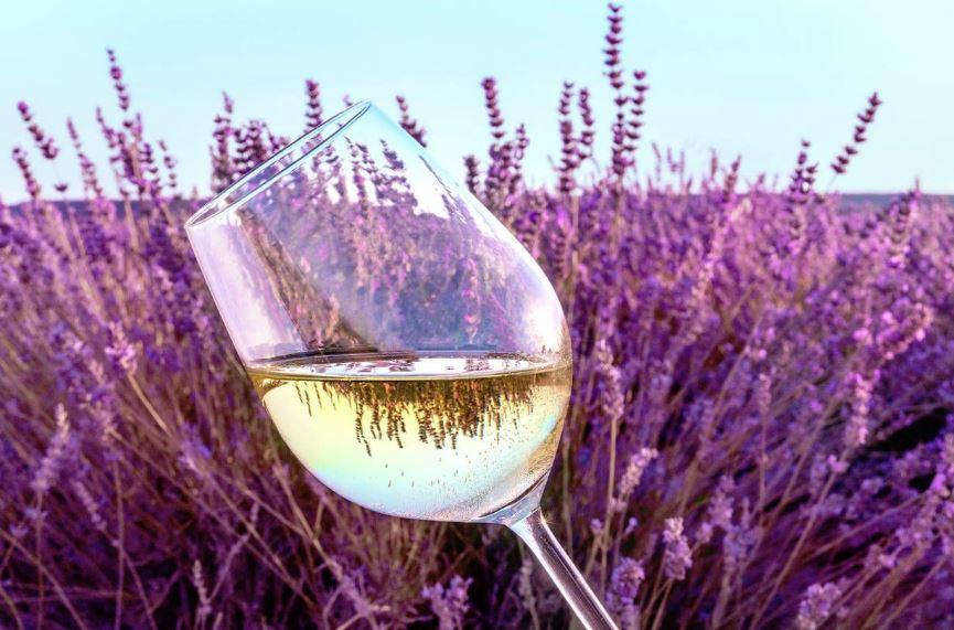 quitar manchas de vino tinto con vino blanco