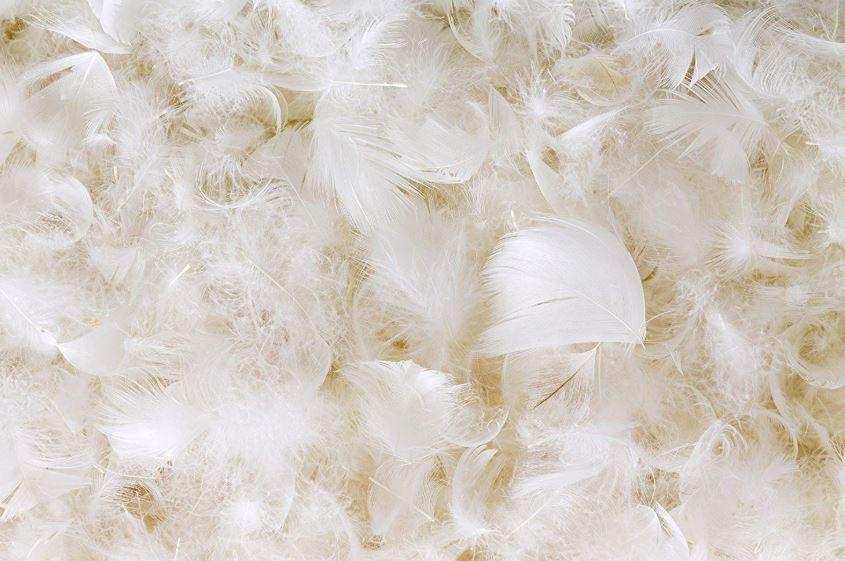 edredón de plumas malo para la salud