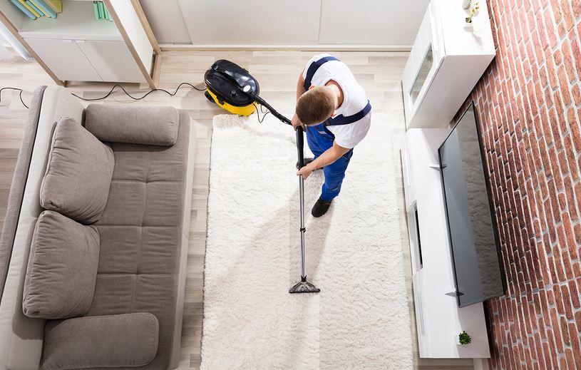 aspiradora para alfombra de pelo largo