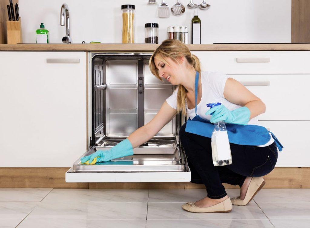 limpieza lavavajillas por dentro