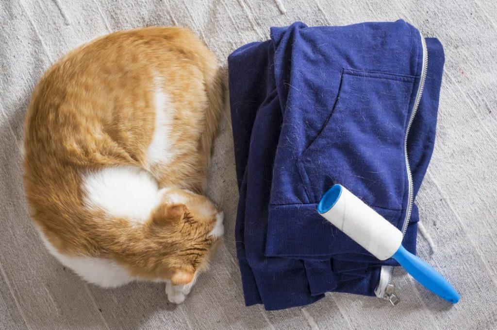cepillo para quitar pelo muerto gato