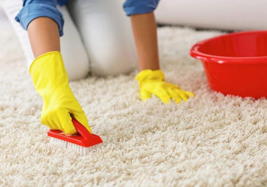 limpiar alfombras pelo largo en casa