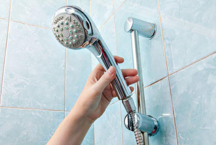 limpiar la regadera de la ducha