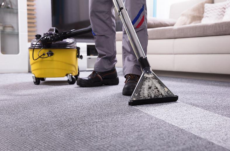 aspiradora de agua para alfombras de yute