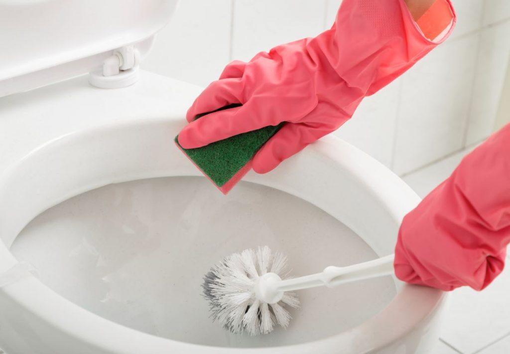 limpiar el inodoro con escoba o cepillo