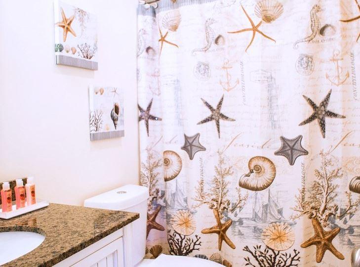 limpieza cortina baño plastico