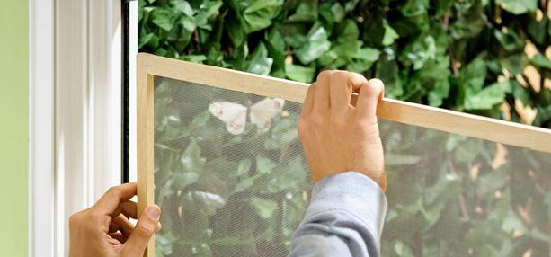 como limpiar las mosquiteras por fuera