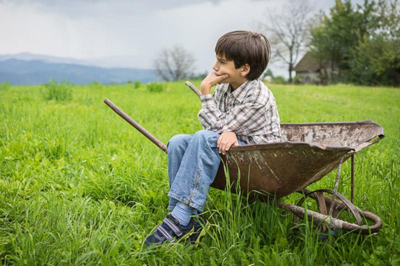 trucos para quitar manchas de hierba