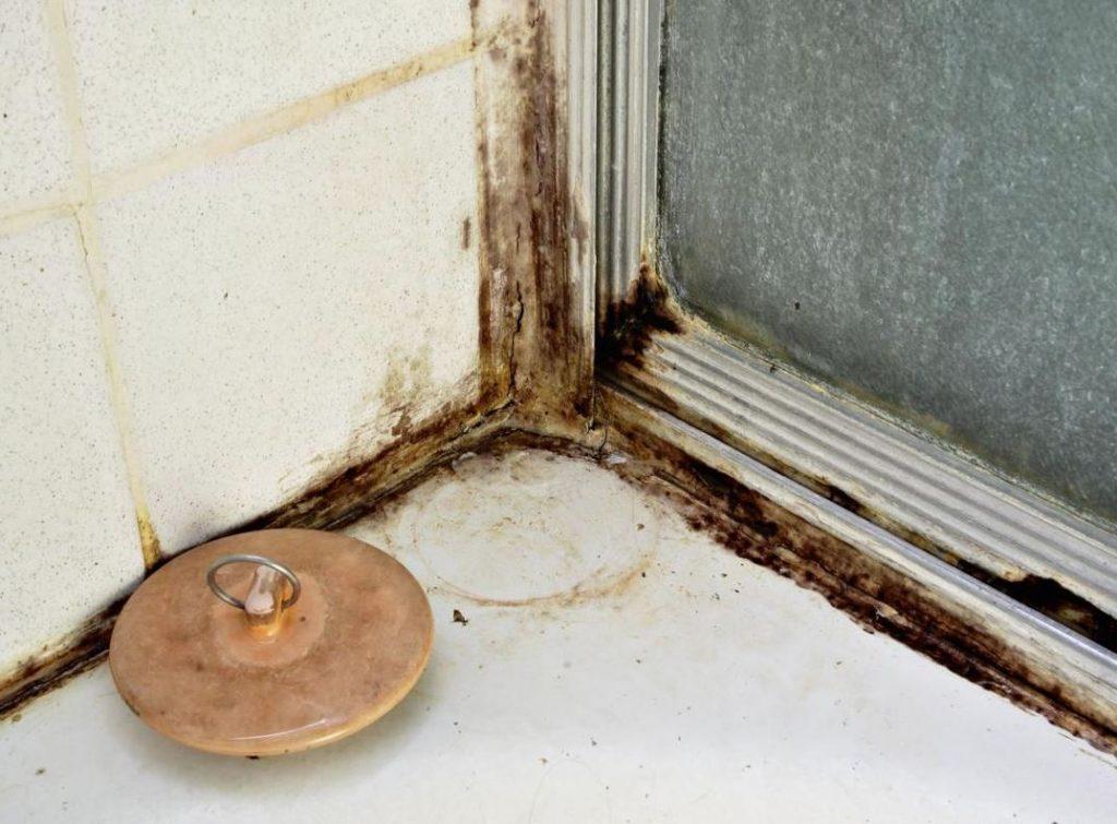 como limpiar las juntas del gresite de la ducha