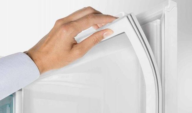 limpiar moho goma frigorifico
