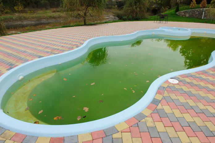 limpiar una piscina con agua verde